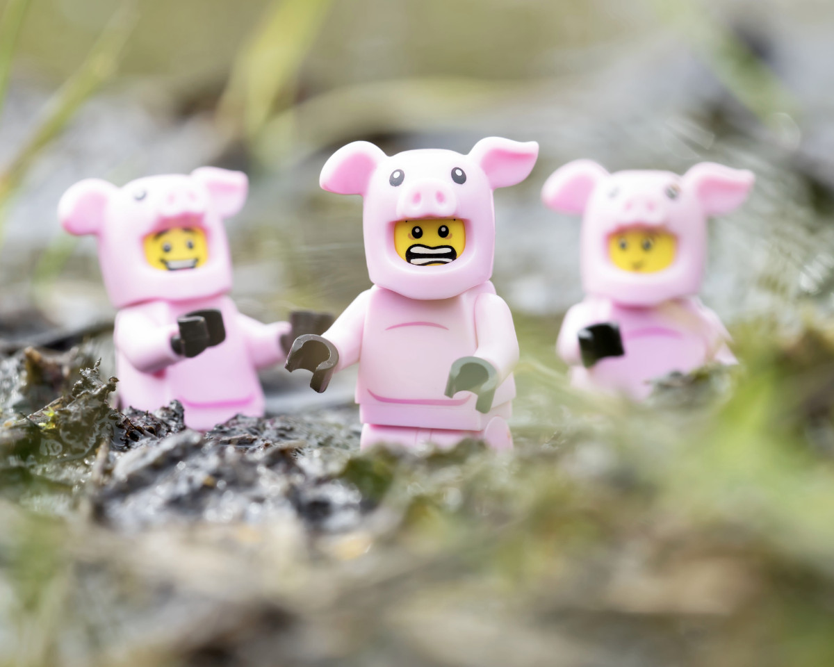 Three LEGO pigs playing in the mud with one running away looking upset